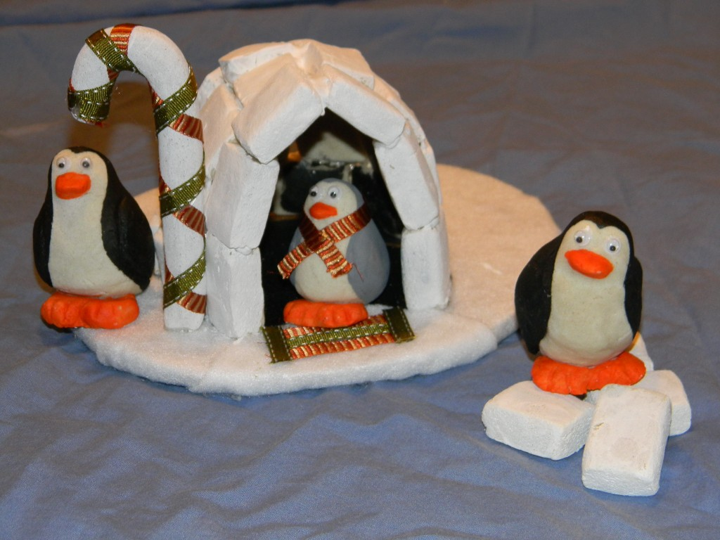 Nos amis les pingouins!